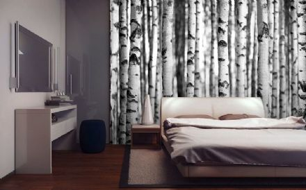 Wallpaper mural Black & white forest
